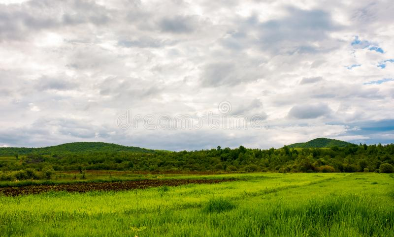 Rural fields on a cloudy day royalty free stock photos