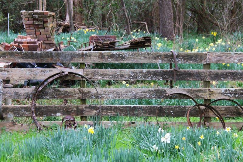 Rural garden hedge fence rusty wheels bricks. A rural garden hedge and fence with rusty wheels and bricks stock photo