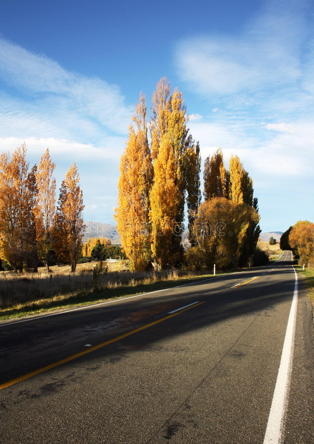 Download Rural Highway stock photo. Image of zealand, long, south - 28727880