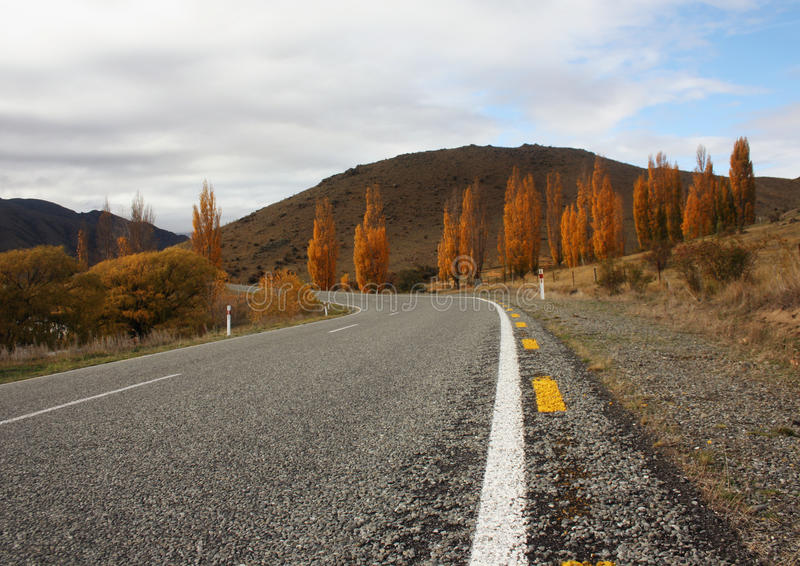 Rural highway of New zEaland