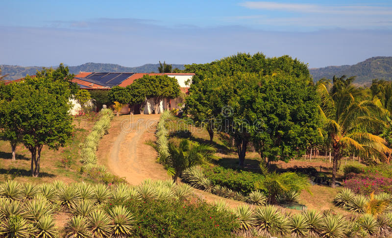 Download Rural Home In Costa Rica Stock Image - Image: 17821951