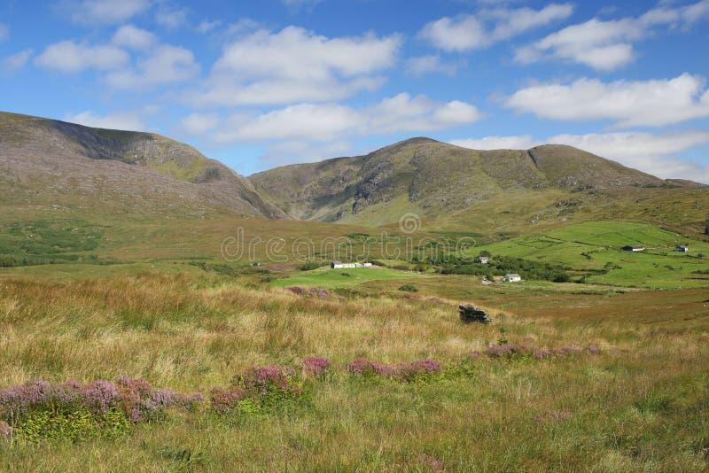 rural ireland obrazy royalty free
