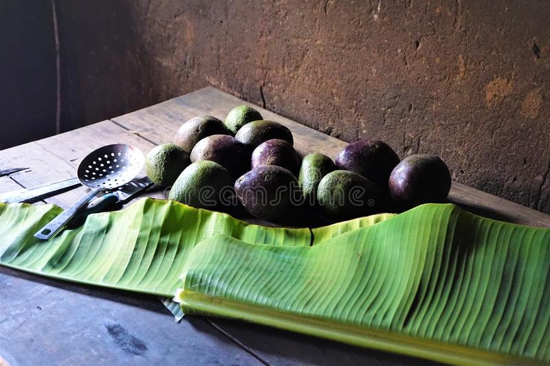 Rustic kitchen table with fresh avocadoes and banana leaf stock images