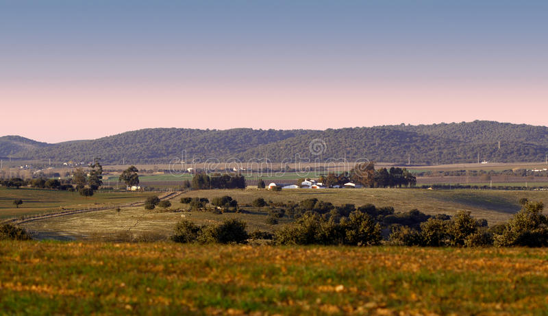 Download Rural landscape stock photo. Image of crops, outdoor - 25041022