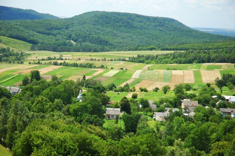 Download Rural landscape stock photo. Image of food, summer, outdoor - 2923320