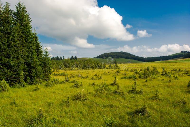 Rural landscape in Austria stock image