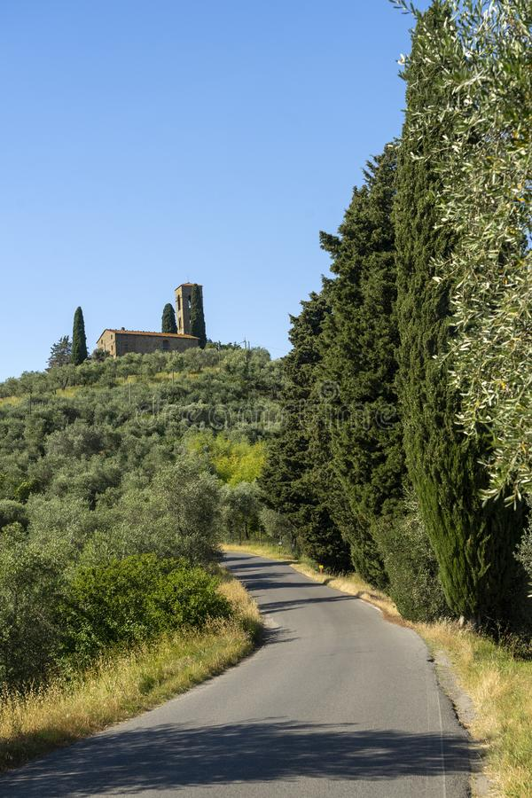 Rural landscape from Buggiano Castello, Tuscany. Rural landscape from Buggiano Castello, historic town near Montecatini, Pistoia, Tuscany, Italy, with olive royalty free stock photography