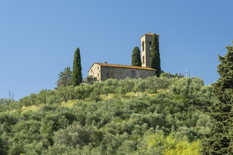 Rural landscape from Buggiano Castello, Tuscany. Rural landscape from Buggiano Castello, historic town near Montecatini, Pistoia, Tuscany, Italy, with olive royalty free stock photo