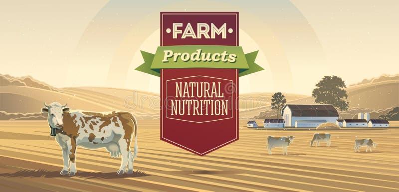 Rural landscape with cows. Rural landscape with cows and lettering design elements stock illustration