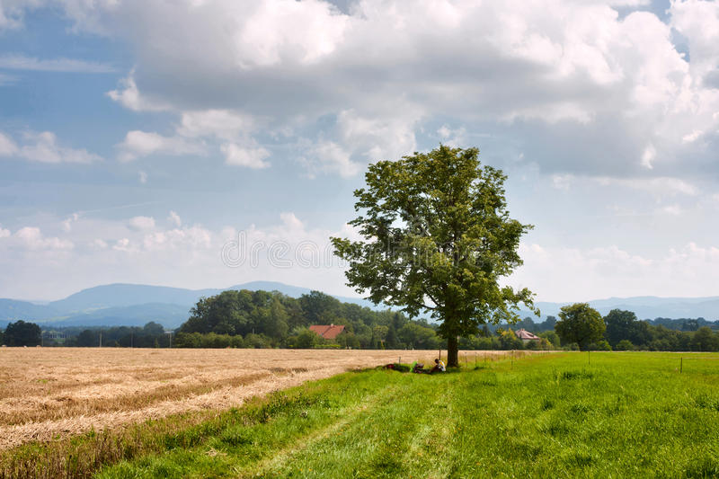 Rural landscape cyclist rest under a tree in Moravian-Silesian region against the background of mountains Western Carpathians royalty free stock image