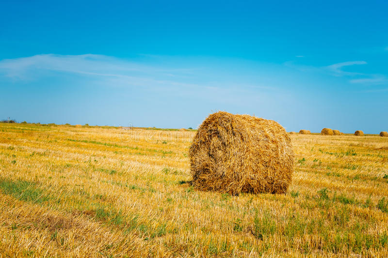 Rural Landscape Field Meadow With Hay Bale After Harvest in Sunn. Y Day in Late Summer, Early Autumn. Clear Blue Sky royalty free stock photos