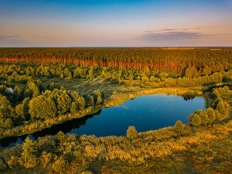 Rural landscape. Forest lake, aerial view from drone royalty free stock photography