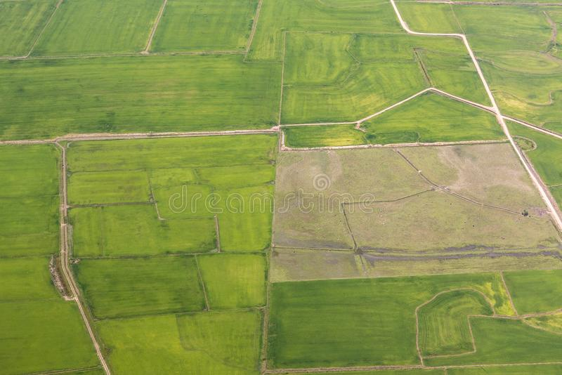 Rural landscape with green fields near Porto Allegre royalty free stock images