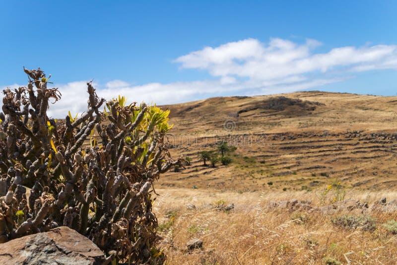 Rural landscape at La Gomera stock photos