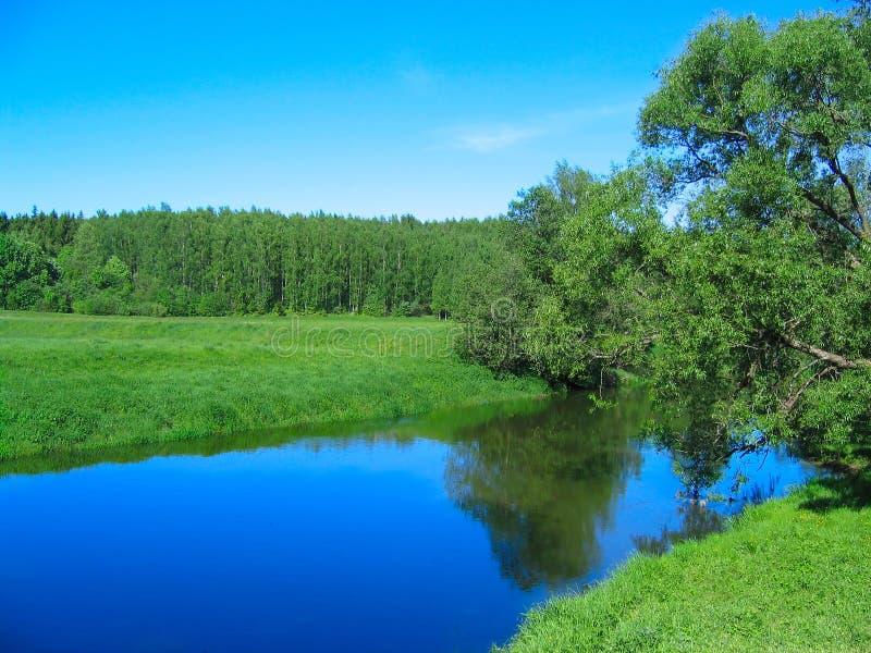 Rural landscape. Nature background. royalty free stock images