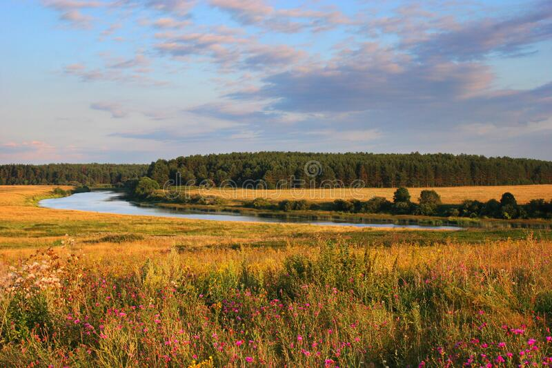 Rural landscape with a river at summer time stock photo
