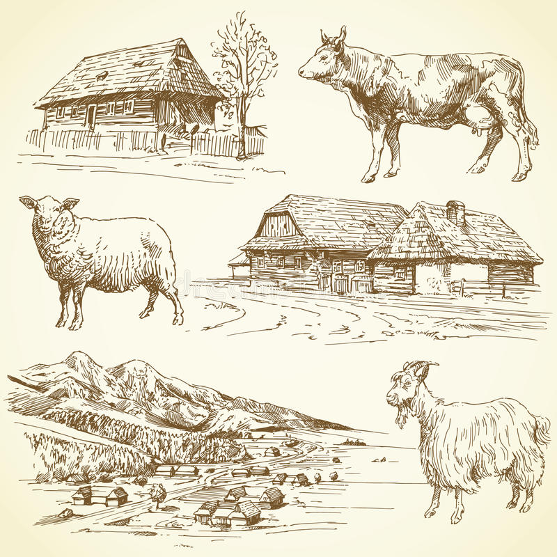 Download Rural Landscape, Village, Farm Animals Stock Vector - Image: 29070357