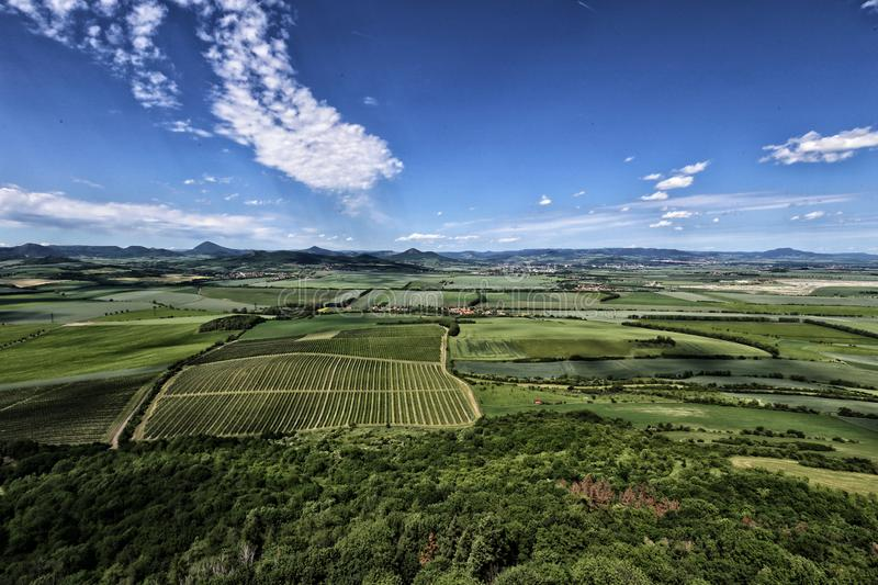 Rural landscape with vineyards gardens and green fields royalty free stock images