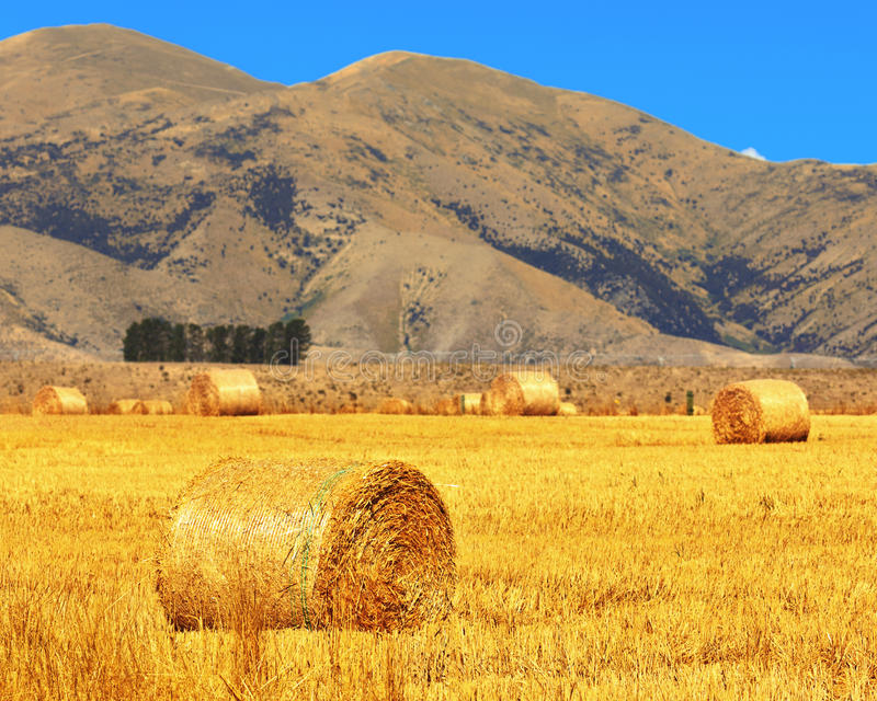 Download Rural lanscape stock image. Image of farming, landscape - 25057065