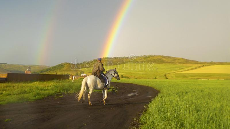 Rural life. A man on a white horse rides a country road after a rain, when a rainbow shines in the sky royalty free stock images