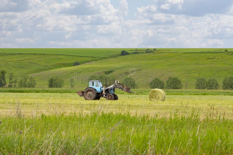 Rural life, a rural tractor collects a sheaf of hay on a green meadow. Round hay roll, pet food, hay on the farm royalty free stock photography