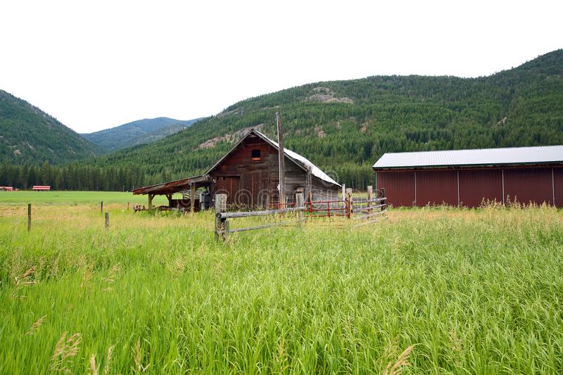 Rural Meadow with Red Barn royalty free stock photography