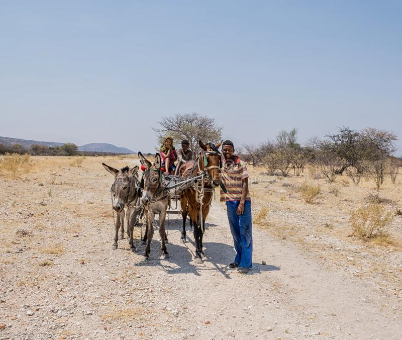Working Cart. Rural Namibia, September 2017 - A horse and donkey drawn working cart royalty free stock photography