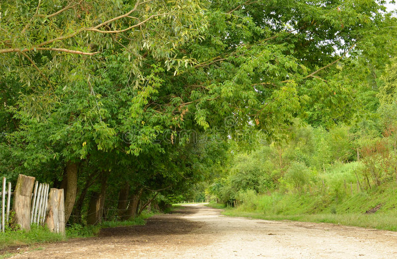 Download Rural Path Stock Photo - Image: 26189580
