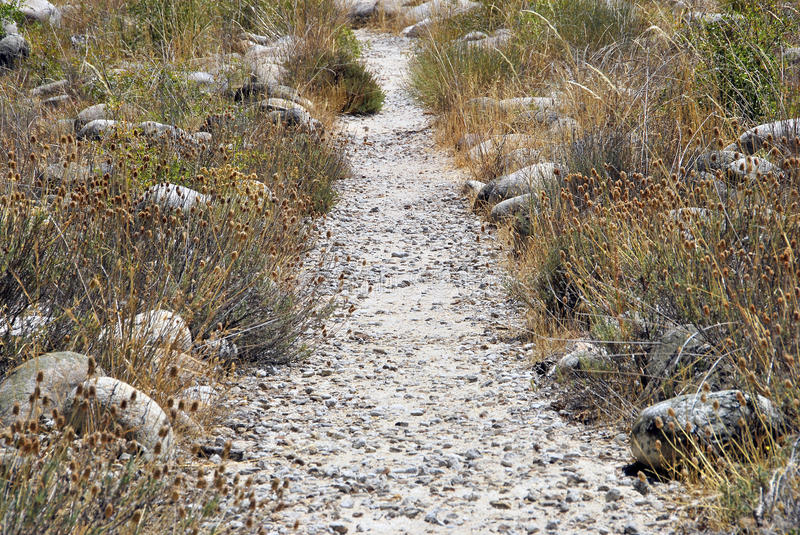 Download Rural path stock image. Image of covered, land, line - 26871485