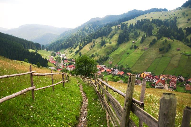 Download Rural road stock photo. Image of grasslands, natural - 12533516
