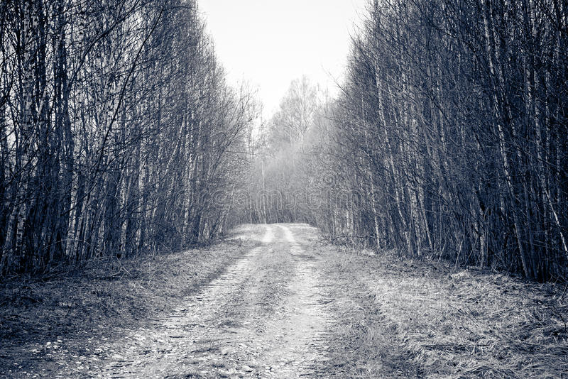 Download Rural Road. Stock Photos - Image: 19630233