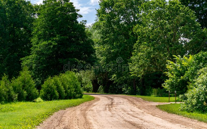 Rural road without asphalt surrounded by green trees.  stock images