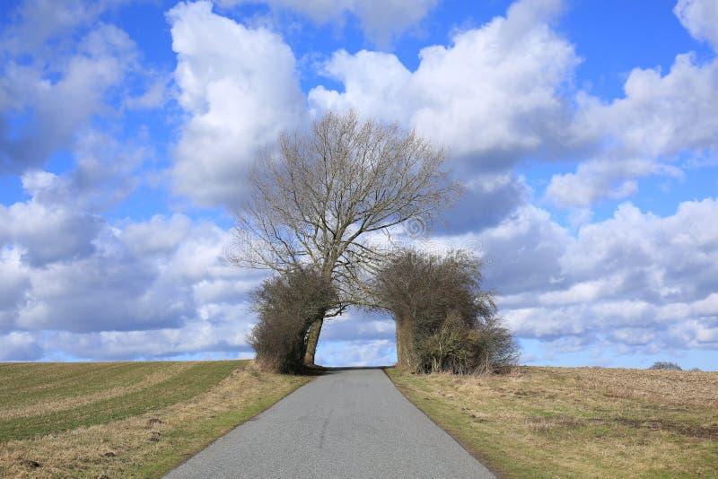 Rural road on Funen Island, Denmark stock images