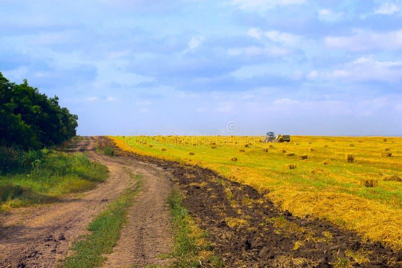 Download Rural Road At Harvest Stock Image - Image: 20448531