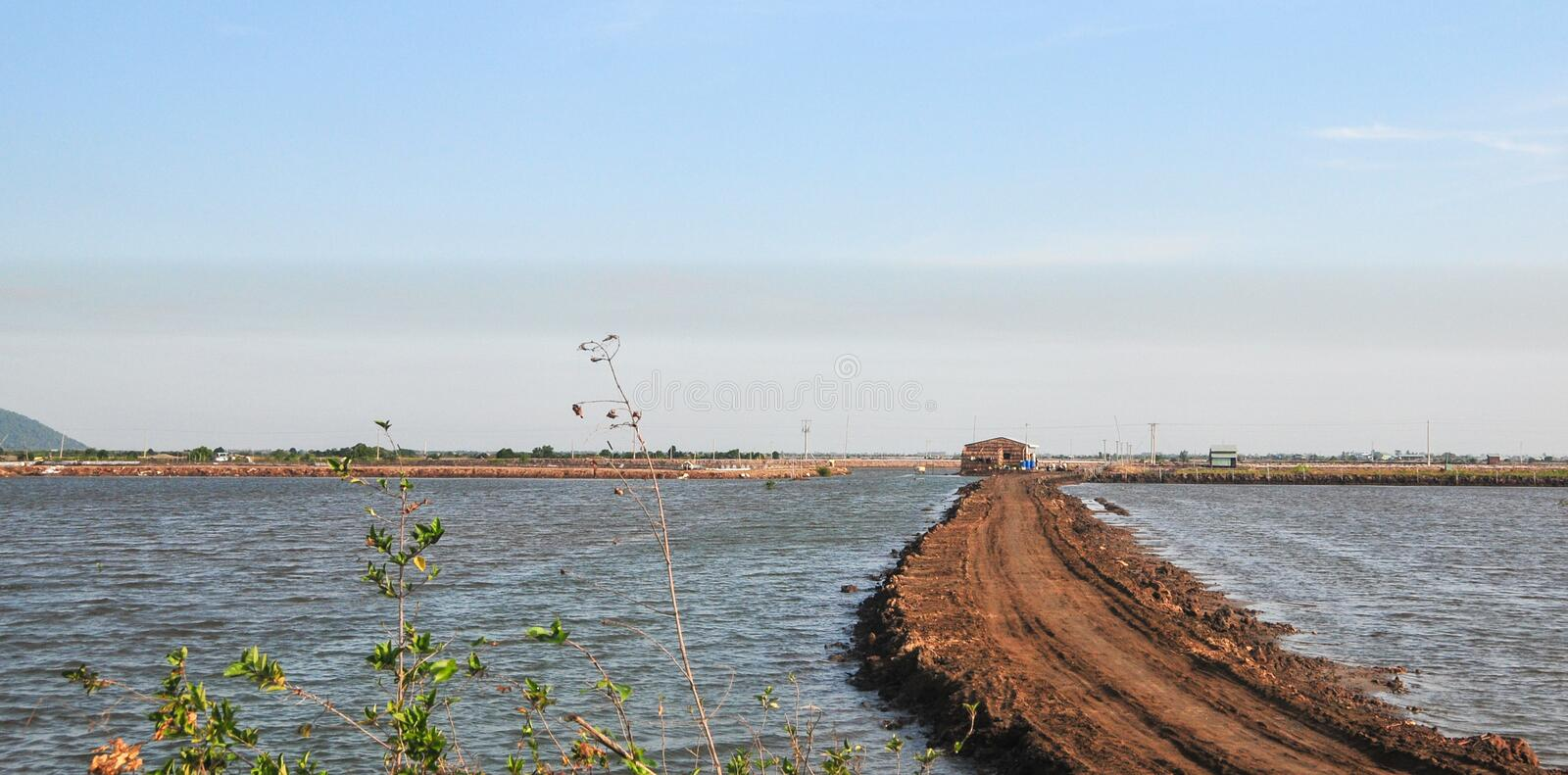 Rural road with the lake at Hong Ngu town in Dongthap, Vietnam.  stock photography