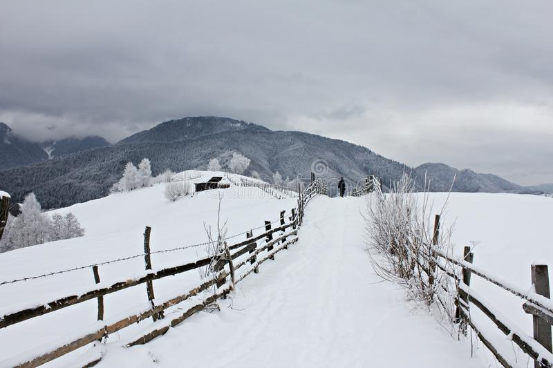 Rural road in the mountains during winter stock images