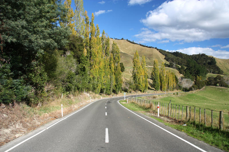 Rural road in New Zealand royalty free stock photos