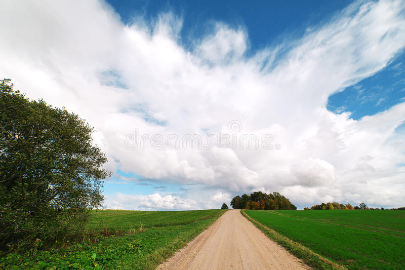 Rural Road In Summertime. Stock Image