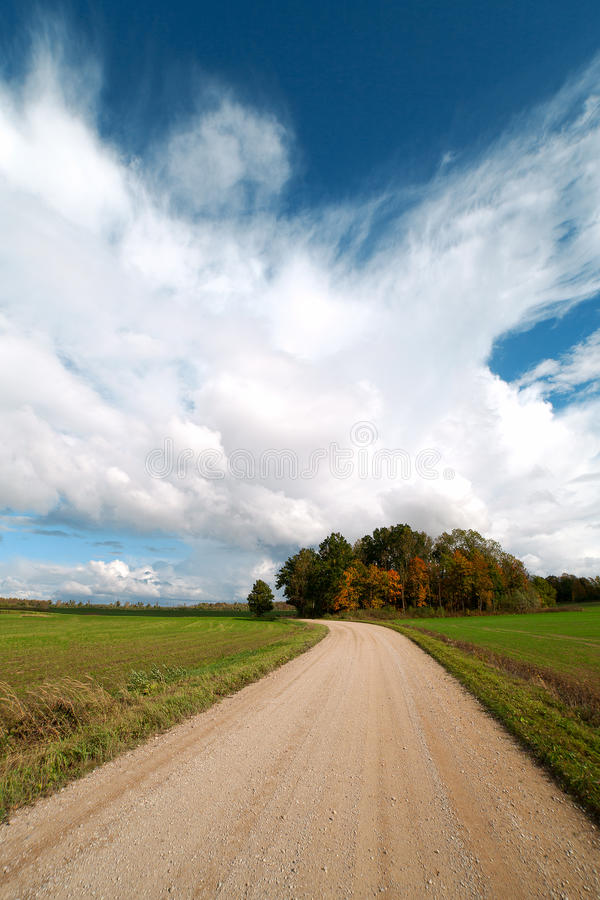 Download Rural road in summertime. stock image. Image of view - 28742725