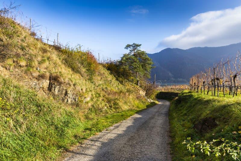 Rural road in Weissenkirchen in der Wachau. Lower Austria royalty free stock photo