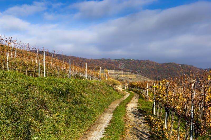 Rural road in Weissenkirchen in der Wachau. Lower Austria stock photo