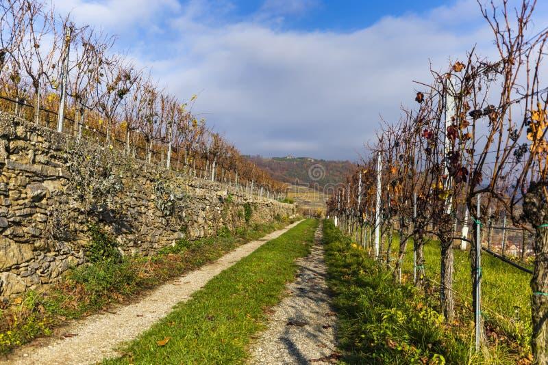 Rural road in Weissenkirchen in der Wachau. Lower Austria royalty free stock image