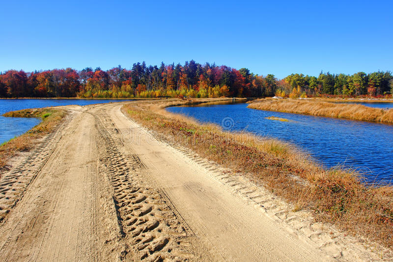 Download Rural Sand Dirt Road In Marsh Wetland Countryside Stock Photo - Image: 28696822