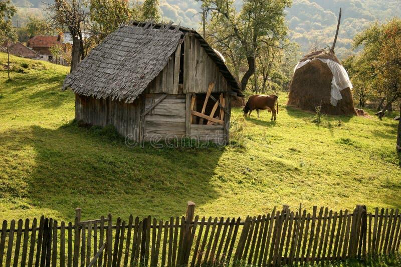 Download Rural Scene stock photo. Image of sarabande, wooden, grass - 1369696