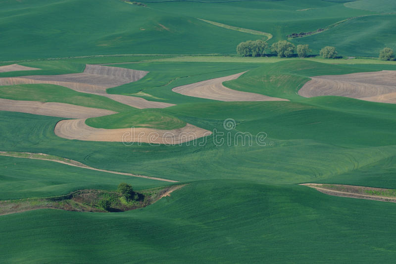 Rural scene royalty free stock image