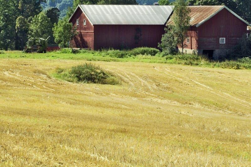 Download Rural Scene Stock Image - Image: 211081