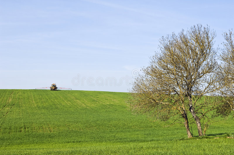 Rural scene. Green field harvest landscape in spring with tractor stock photo