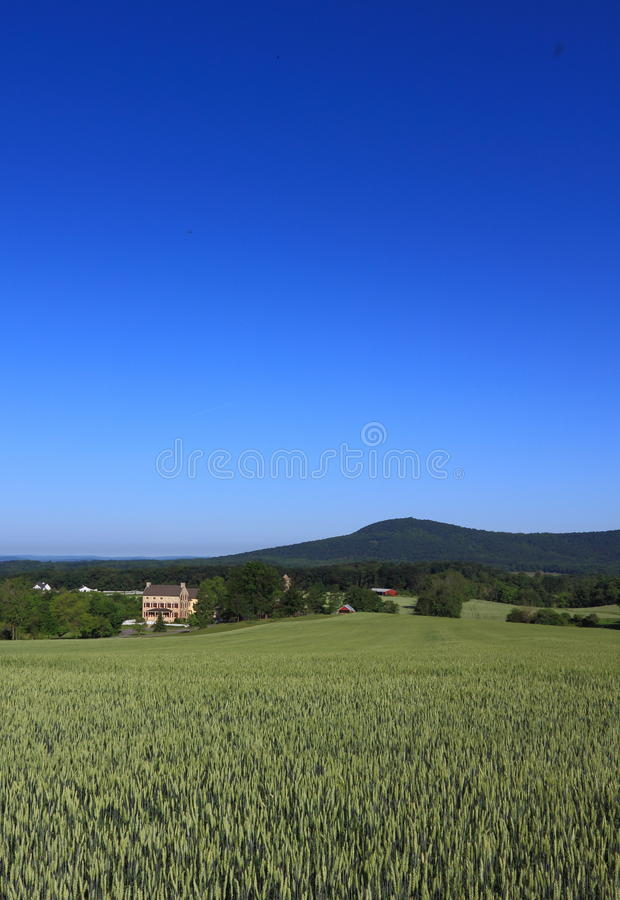 Rural Scenery royalty free stock image