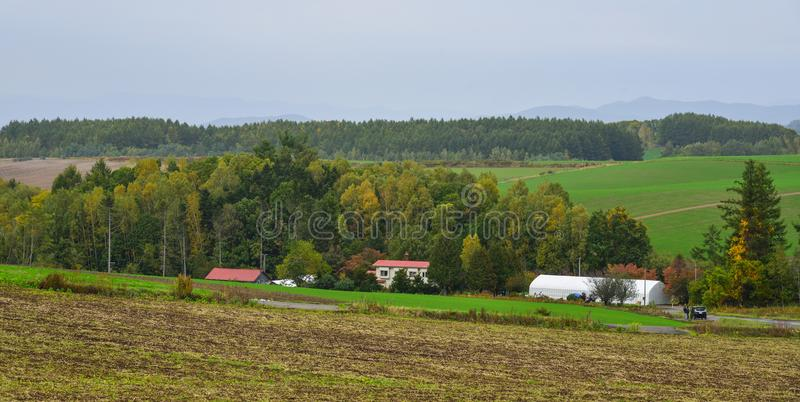 Rural scenery in Biei, Hokkaido, Japan royalty free stock photography