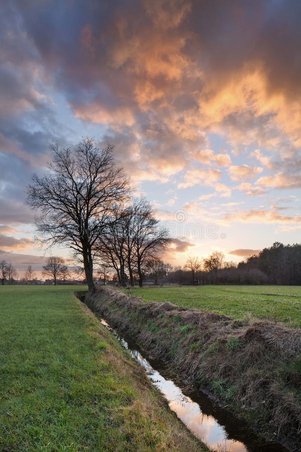 Rural scenery, field with trees near a ditch and colorful sunset with dramatic clouds, Weelde, Belgium stock image